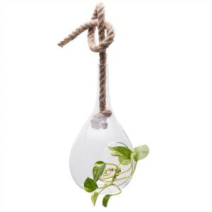 Floretta Petite Hanging Glass Vase with Jute Rope - Large