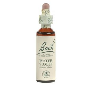 Bach Flower Water Violet